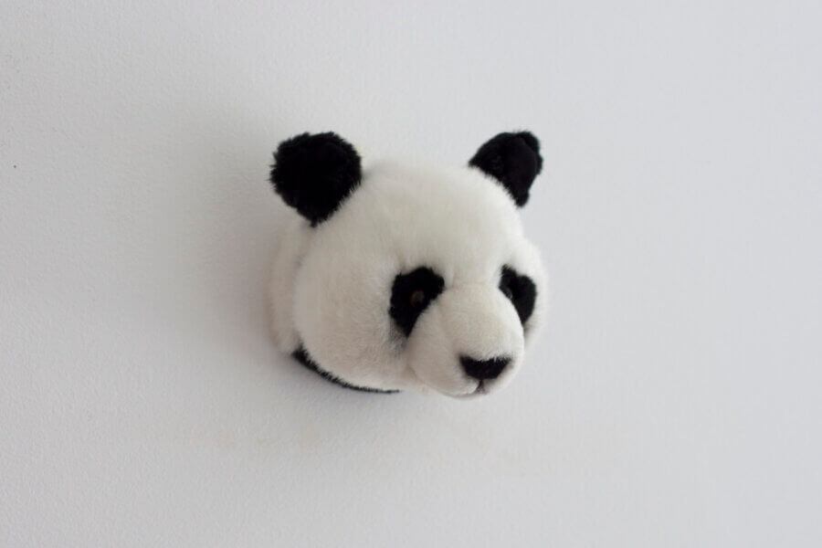 Wild And Soft Small Head Lovely Set